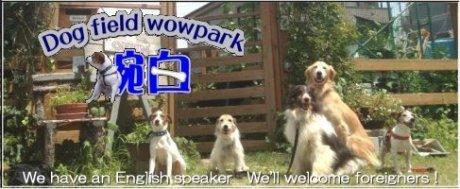 Dog Field Wowpark 腕白 は児童館のような施設を目指しています。